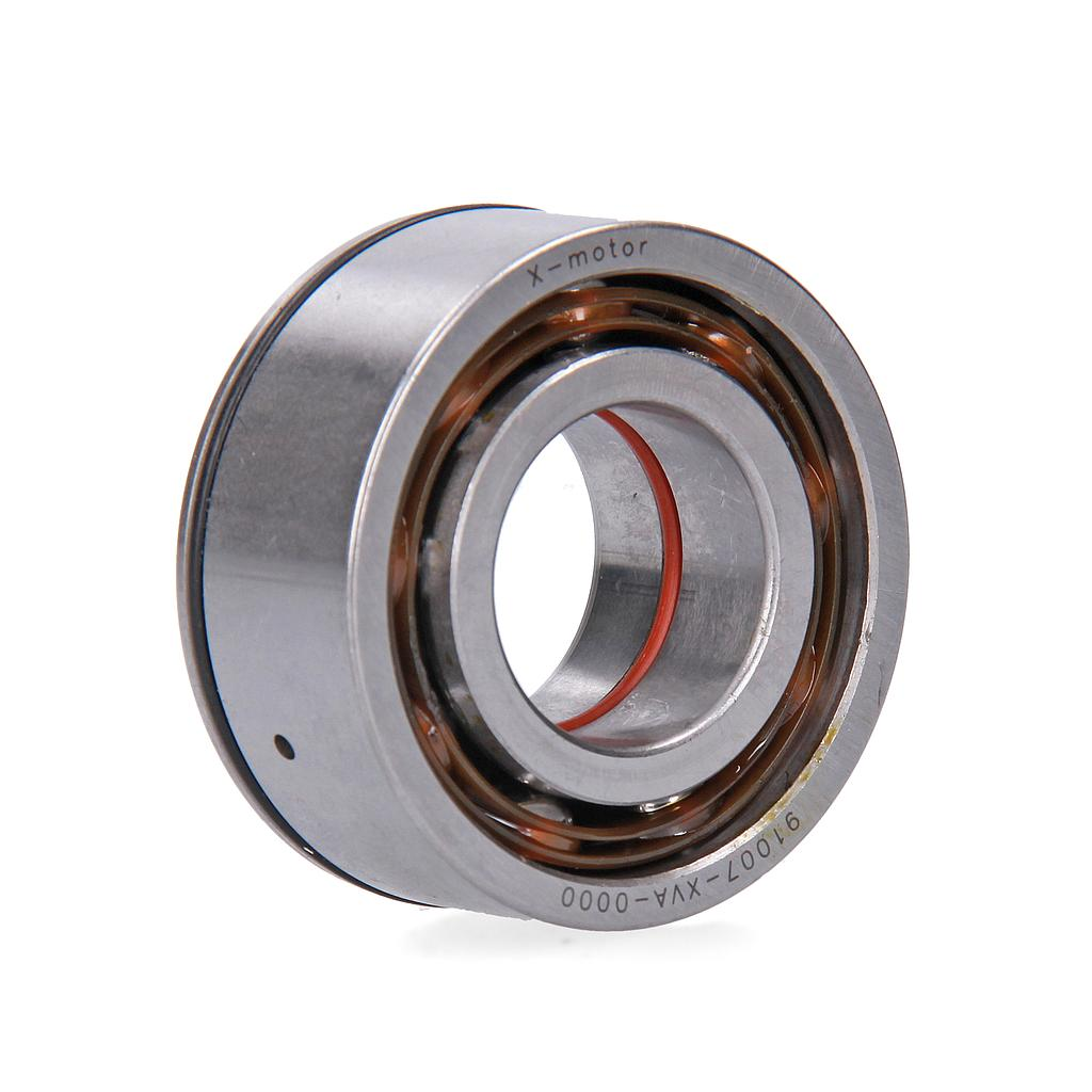 BEARING BALL RADIAL 6205 SPECIAL + PTFE OIL SEAL, 30x47x06 (1 unit)
